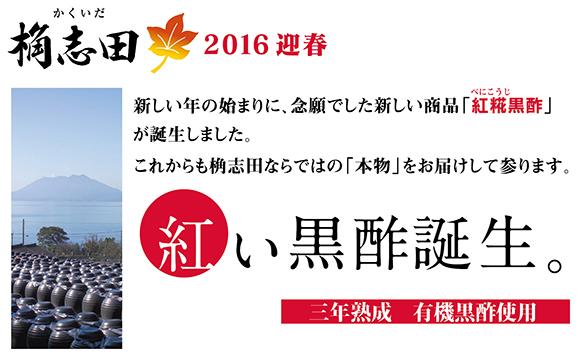 2016.1.7a.jpg
