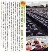 kyuntokiji20090122..jpg