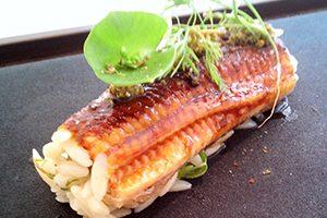 鰻と蒲焼きとリゾーニの黒酢握り