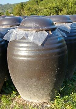 黒酢杜氏赤池力がさまざまな壷を試し行き着いた信楽焼