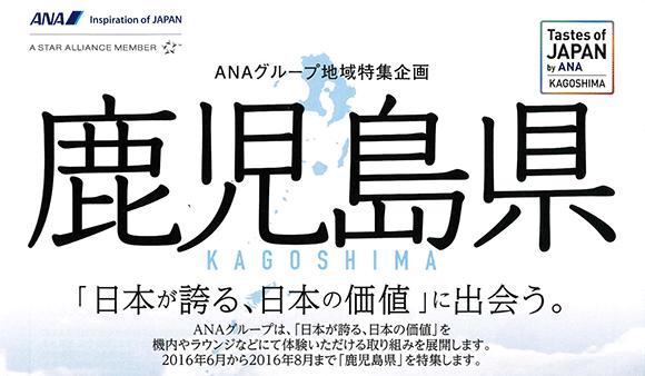 ANAグループ地域特集企画