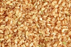 良質な玄米のみを使用しています
